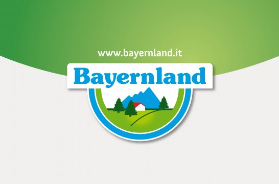 bld_logo.jpg
