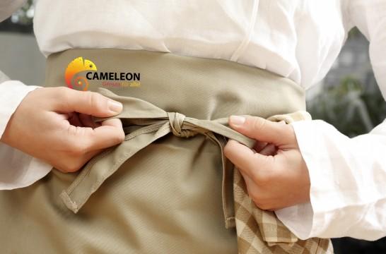 cameleon_schurze.jpg